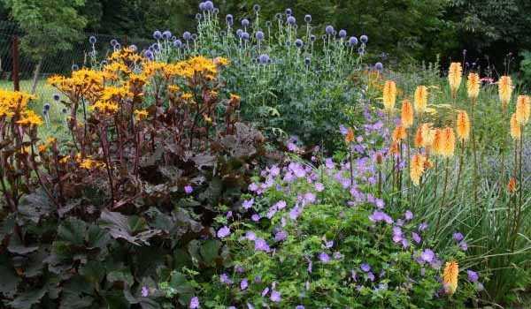 Как исправить некрасивый цветник: 10 безотказных приемов