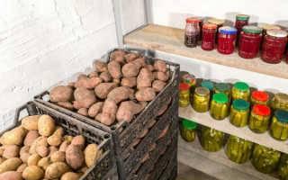 Хотите знать, как правильно хранить картошку в квартире зимой? расскажем!
