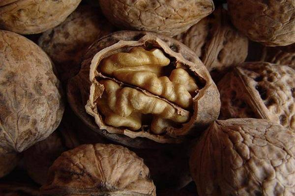 Королева лета — клубника: лучшие сорта и необычные способы ее выращивания