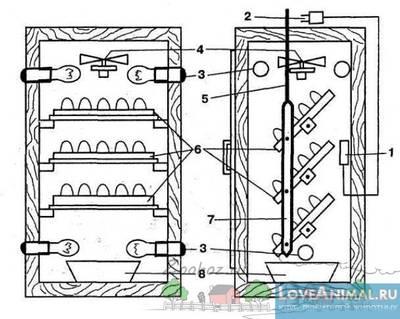 Самодельный инкубатор для яиц: пошаговая инструкция, виды конструкций и материалов