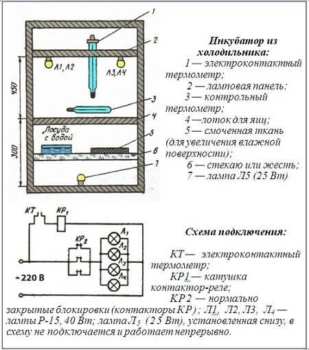 Схема работы и инструкция инкубатора несушка