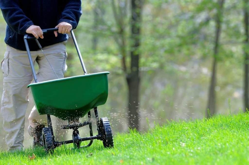 Удобрение для газона весной