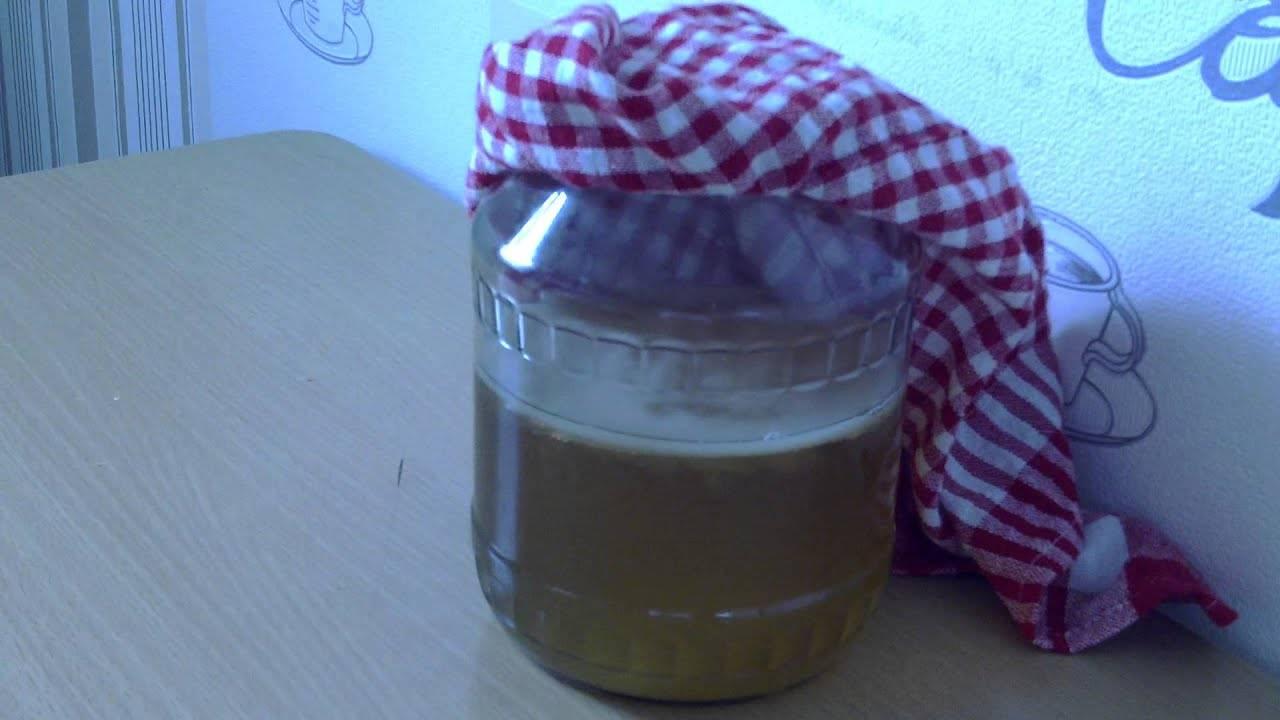 Чайный гриб: полезные свойства и противопоказания, отзывы. чайный гриб: как ухаживать и употреблять, как вырастить с нуля в домашних условиях?