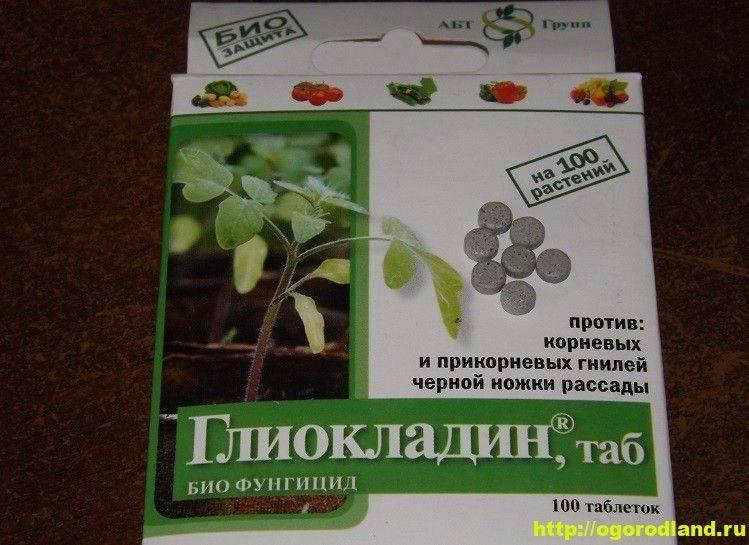 Применение глиокладина для растений, способы и дозировка