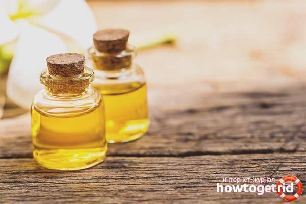 Масло жожоба — уникальное средство для сохранения красоты и здоровья