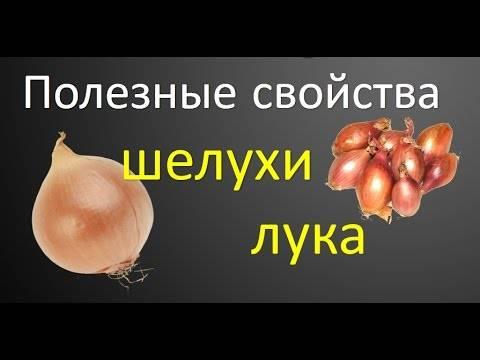 Применение луковой шелухи для оздоровления организма