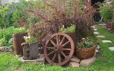 Кантри или сельский стиль в саду - выбор растений