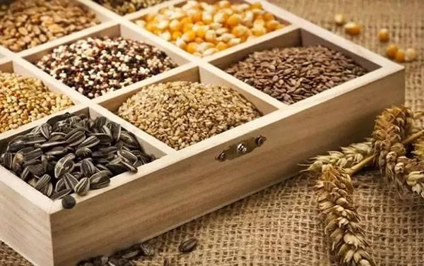 Правила сбора и хранения семян со своих грядок, видео