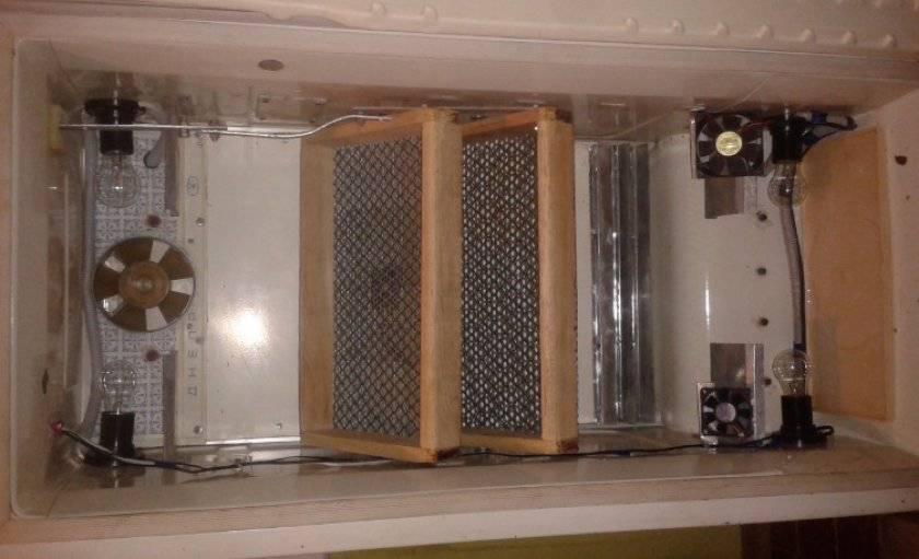 Три вида самодельных инкубаторов — хорошая альтернатива покупному