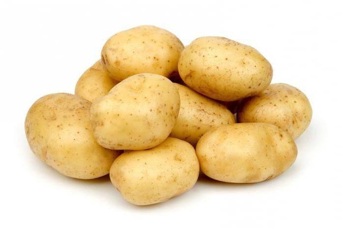 Сроки созревания картофеля и особенности уборки клубней, видео