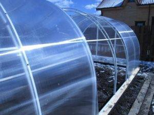 Монолитный поликарбонат для теплицы