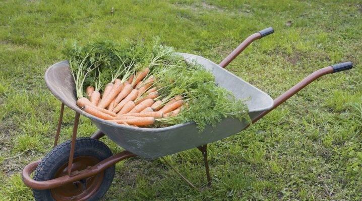 Это быстро и просто — изготовить садовый инструмент