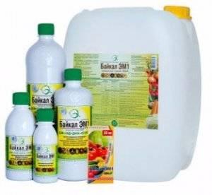 Байкал эм-1: супер эффективная технология питания растений