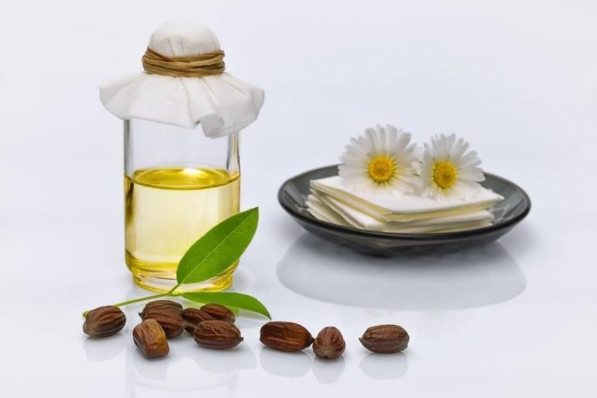 Экзотическое масло жожоба— уникальные свойства и применение для здоровья и красоты
