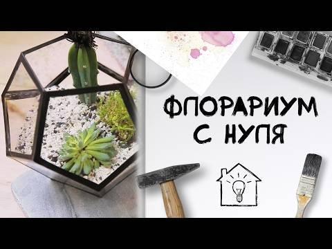 Опунция садовая