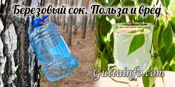 Березовый сок — польза и вред натурального напитка