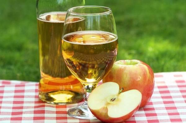 Домашнее вино из натурального яблочного сока: специфика приготовления