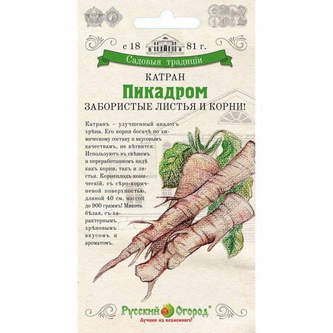 Рецепт от простатита с хреном лечение хвощем полевым простатит