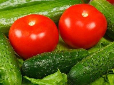 Яичная скорлупа как удобрение для рассады помидор — передаем все нюансы