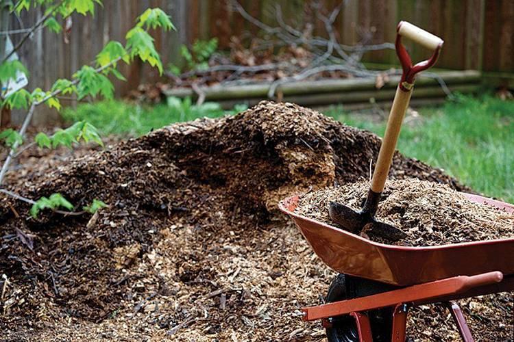 Мульчирование поверхности почвы. как и зачем