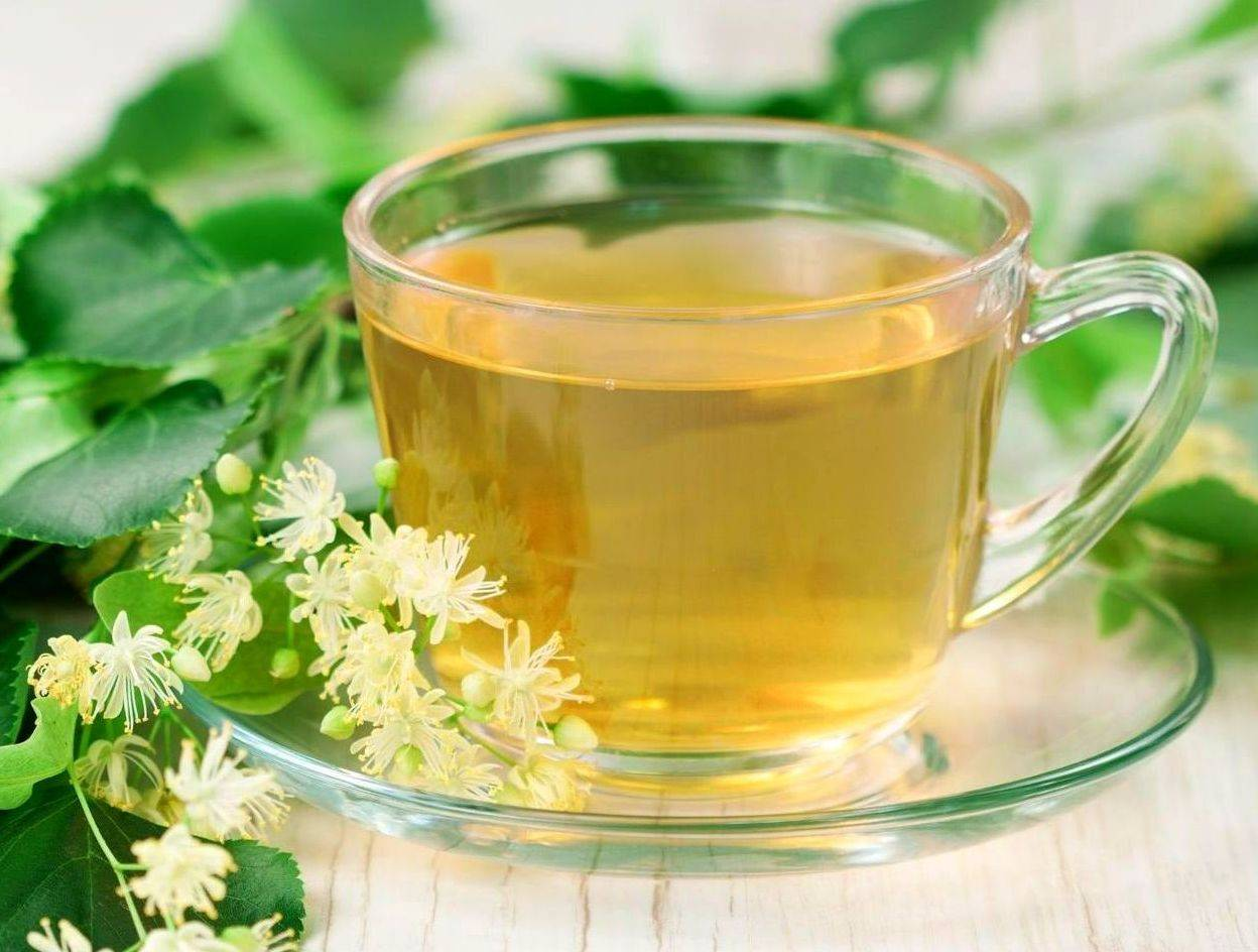 Цветы липы лечебные свойства и противопоказания рецепты