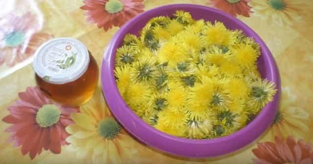 Варенье изодуванчика: десерт для лечения печени, похудения икрепкого иммунитета