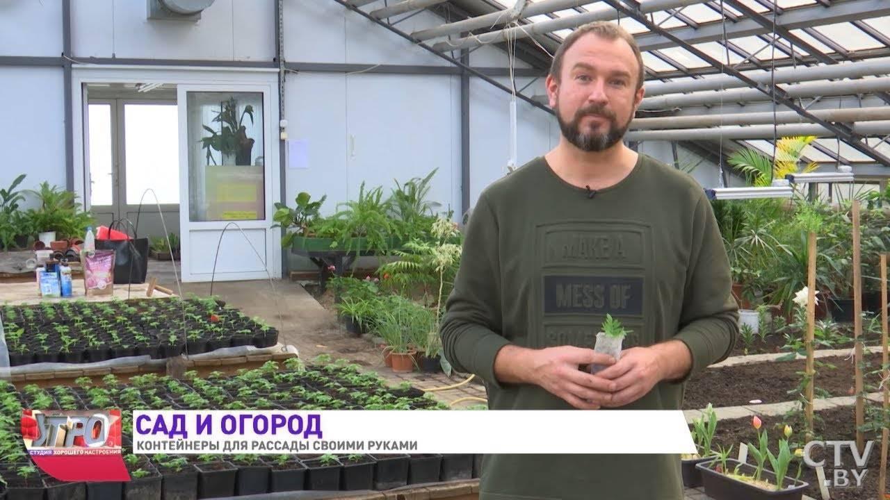 """Оптовый интернет-магазин """"русский огород — нк""""!"""