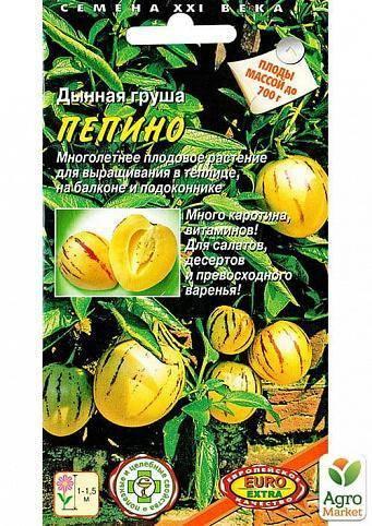 Пепино: выращивание в домашних условиях экзотического растения с вкусными плодами