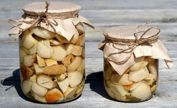 Грибы на зиму. вкусные рецепты грибных заготовок в банках