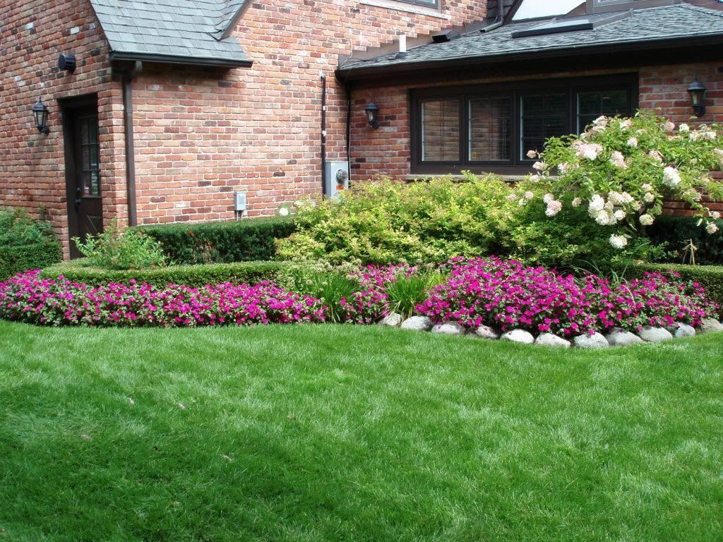 Скарификация газона и мульчирование – кнут и пряник для газонной травы