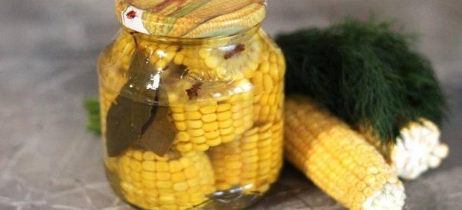Как консервировать кукурузу в початках и зернами в домашних условиях на зиму, рецепты со стерилизацией и без