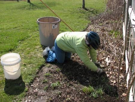 Март для садовода и огородника: дачные работы