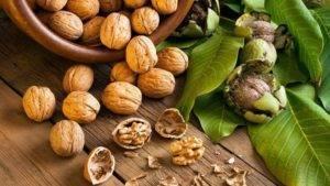 Лечебные настойки из скорлупы грецких и кедровых орехов