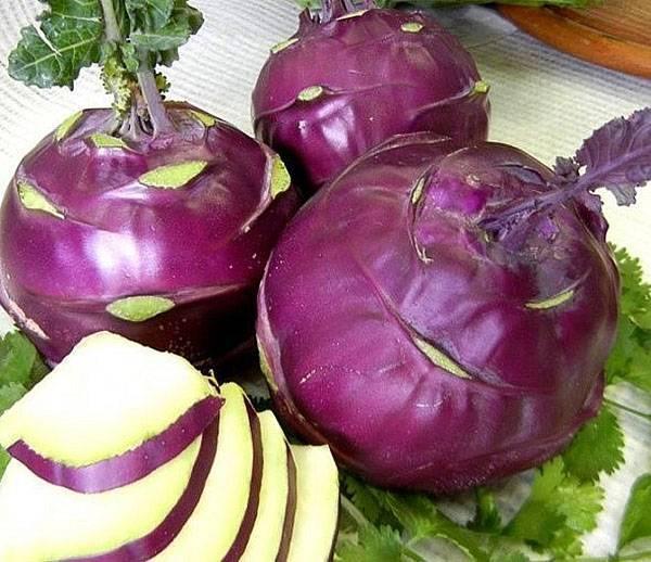 Капуста кольраби - польза и вред овоща в сыром и приготовленном виде
