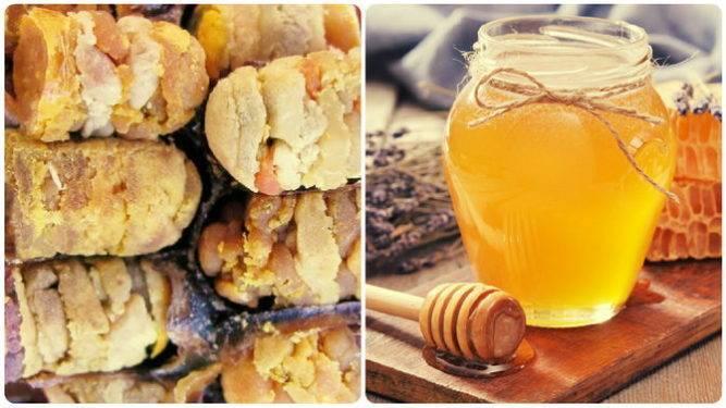 Лечение продуктами пчеловодства: пергой, пыльцой и маточным молочком