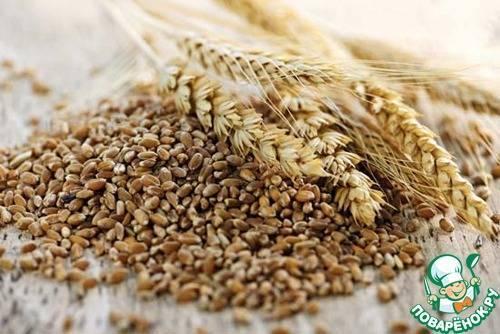 Трикале пшеница что это