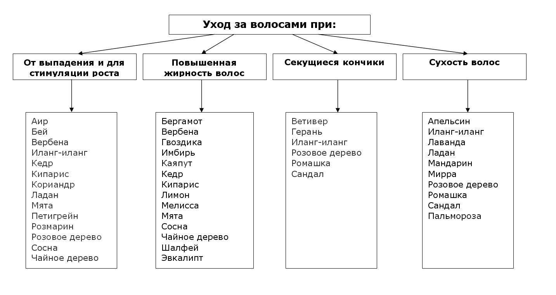 Учимся правило выбирать масло для бензокосы разных марок