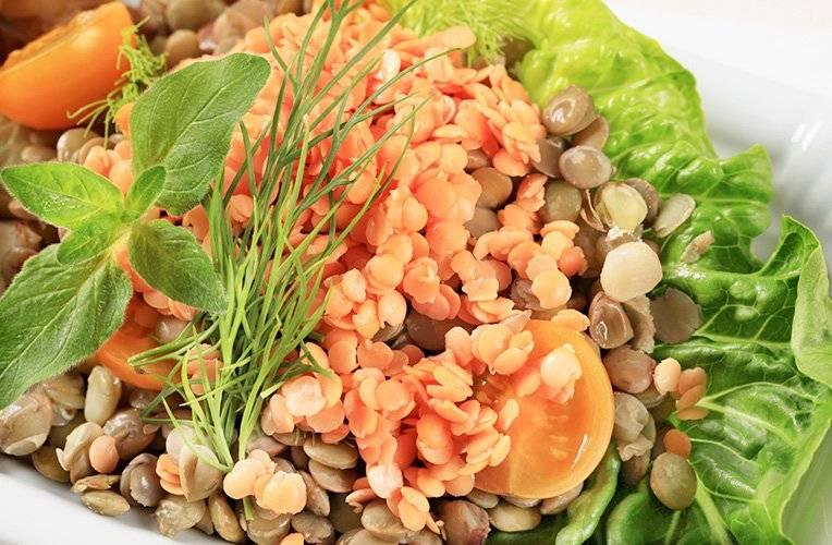 Чечевица – польза и вред для здоровья, рецепты