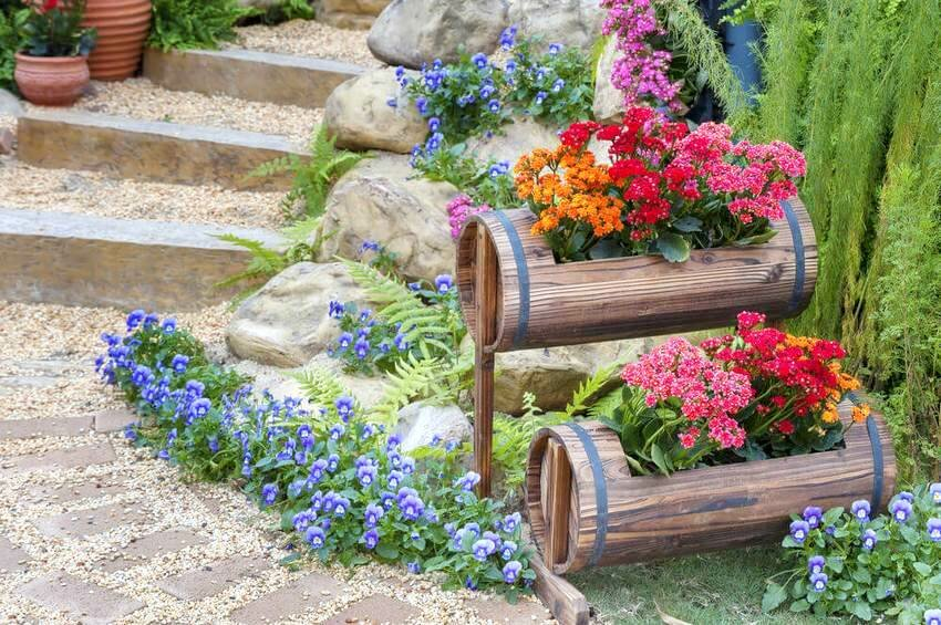 Простая схема клумбы с пионами на даче — удачный выбор цветника