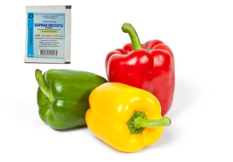 Борная кислота — применение для растений в саду и огороде