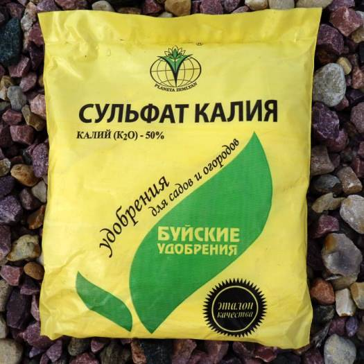 Секреты удобрений: хлористый калий, тонкости агрохимии