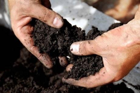 Дерновая земля для сада и огорода