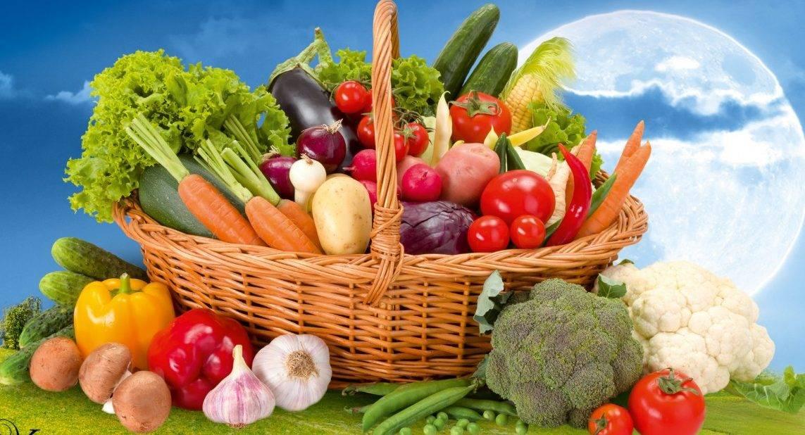 Необычные овощи: коническая капуста