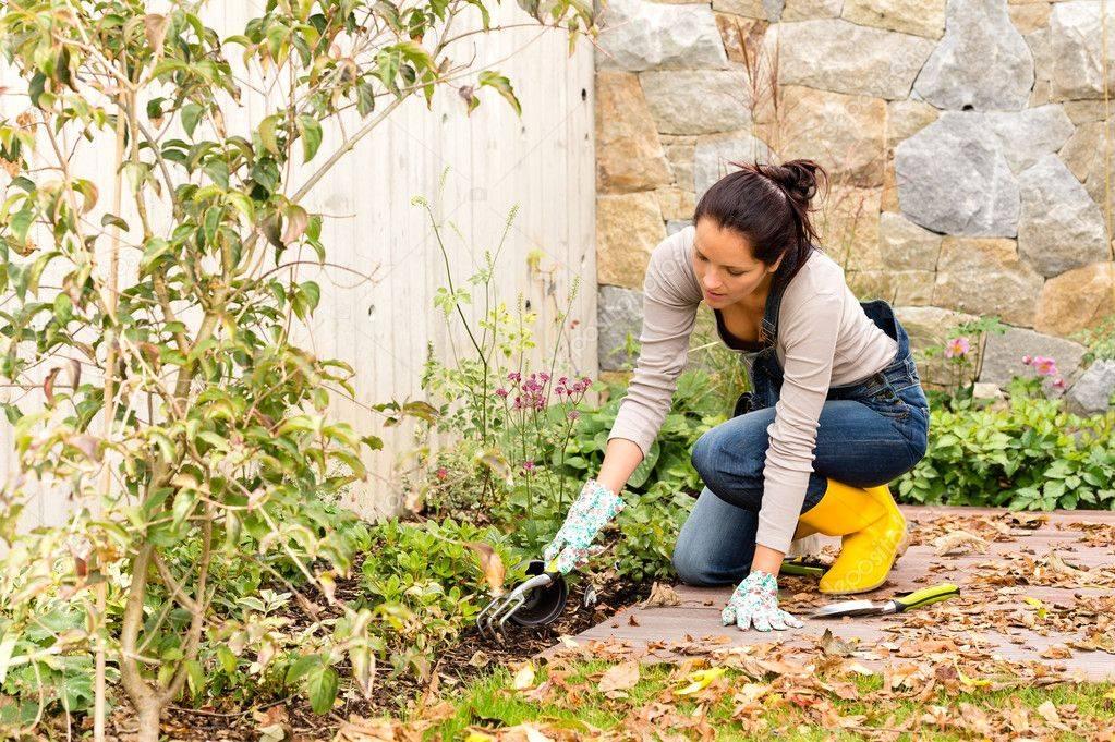 Весенние работывсадув марте и апреле — открытие дачного сезона
