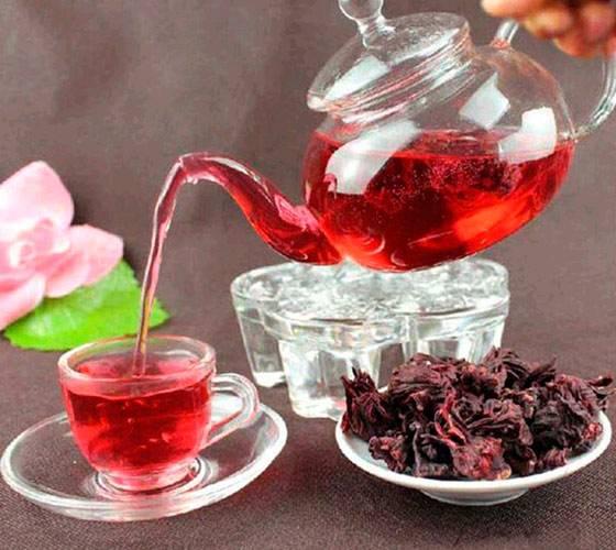 Все о полезных свойствах и вреде ароматного гибискуса