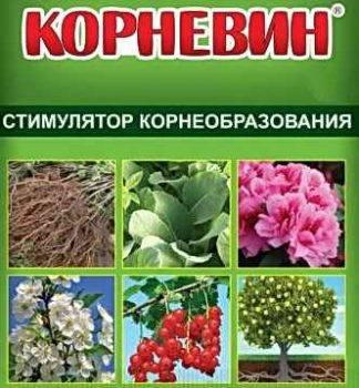 Корневин: инструкция по применению, плюсы и минусы удобрения, использование в саду