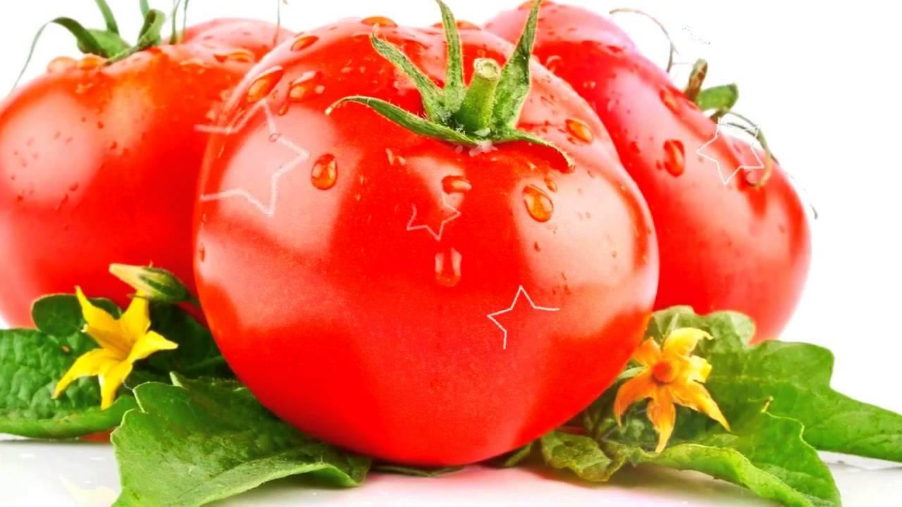 Польза для здоровья ароматной и любимой дыни