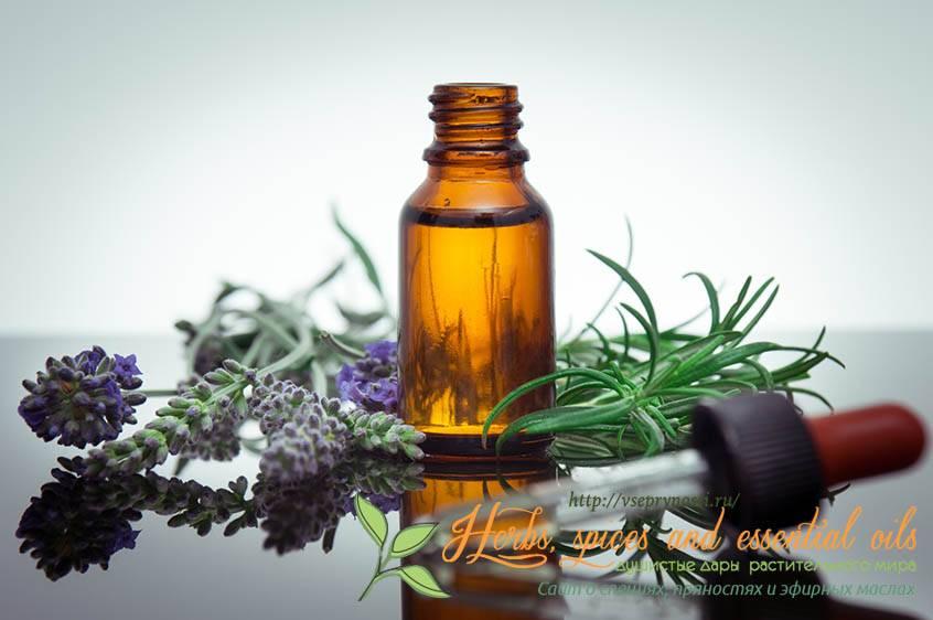Эфирное масло можжевельника: состав и польза. свойства и лечение эфирным маслом можжевельника. применение масла можжевельника в косметологии