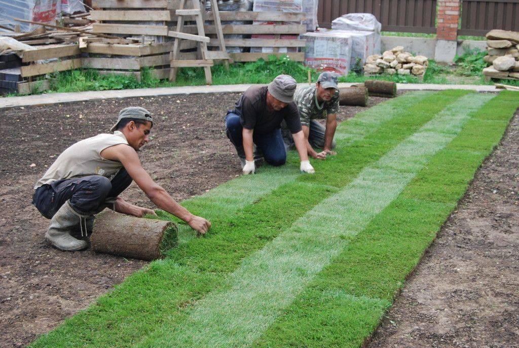 Натуральный зеленый рулонный газон