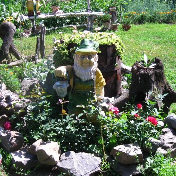 Удивительный рутарий – сад корней на вашем участке, видео